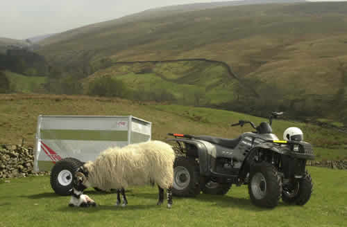 Sheep Trailer
